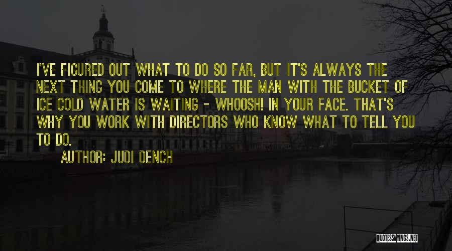 Ice Bucket Quotes By Judi Dench