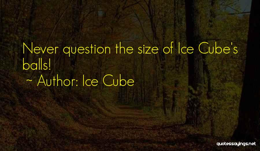 Ice Cube Quotes 1297828