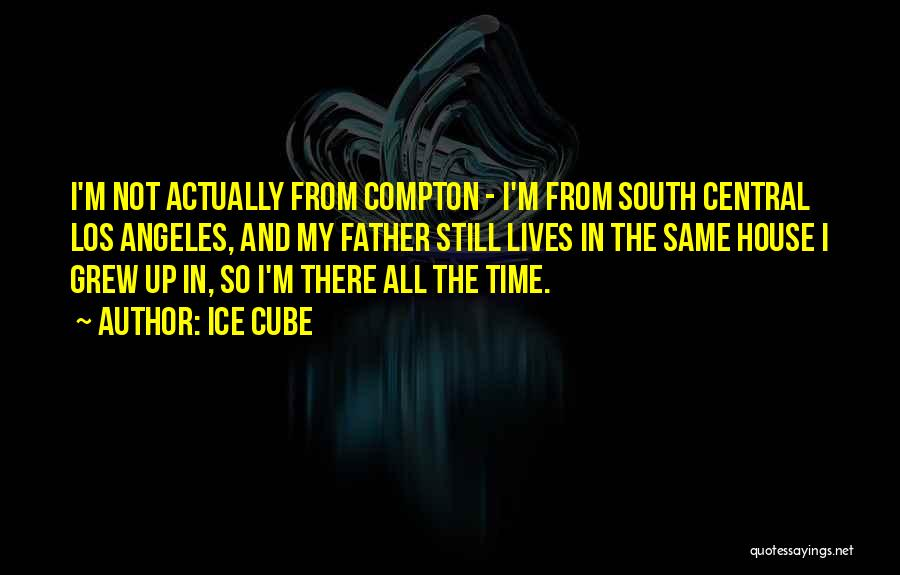 Ice Cube Quotes 2111542