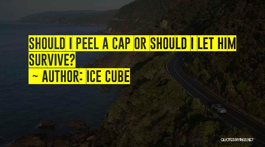 Ice Cube Quotes 636334