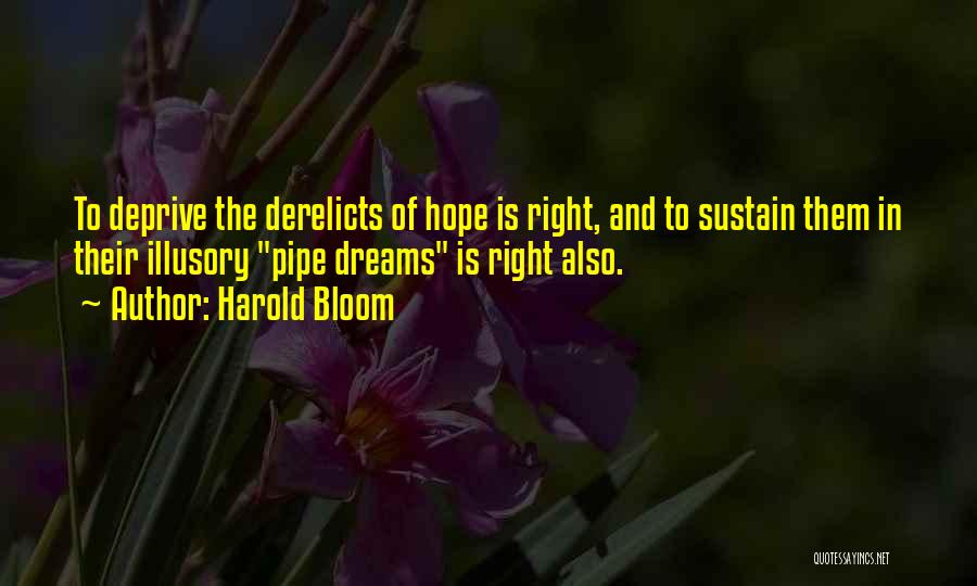 Iceman Quotes By Harold Bloom