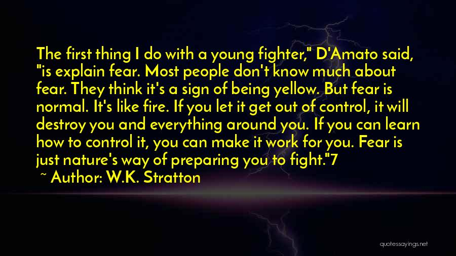 I'd Fight For You Quotes By W.K. Stratton
