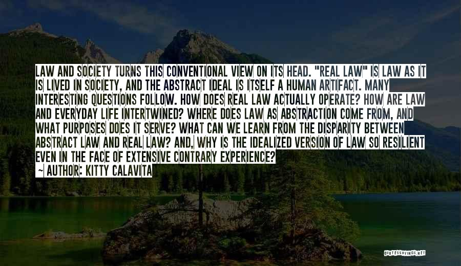 Ideal Society Quotes By Kitty Calavita