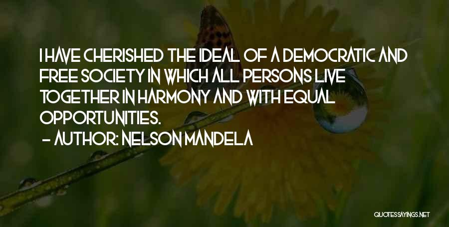 Ideal Society Quotes By Nelson Mandela