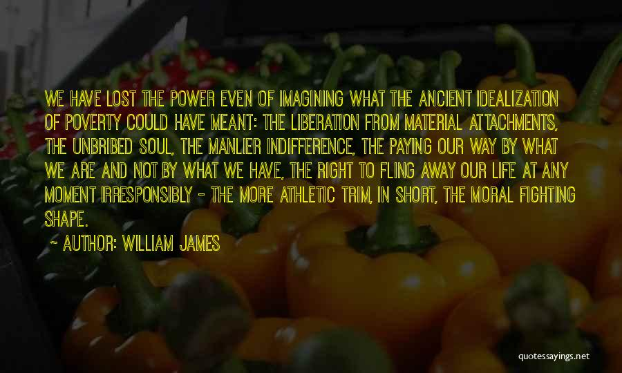 Idealization Quotes By William James