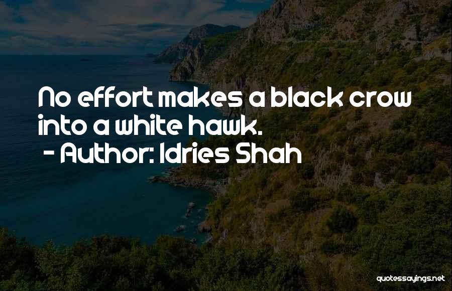 Idries Shah Quotes 1149324