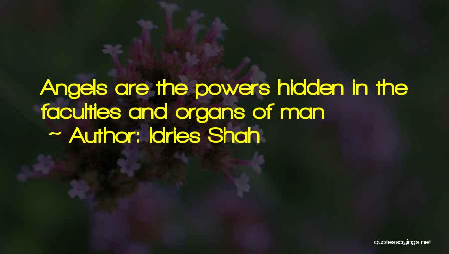 Idries Shah Quotes 1441299