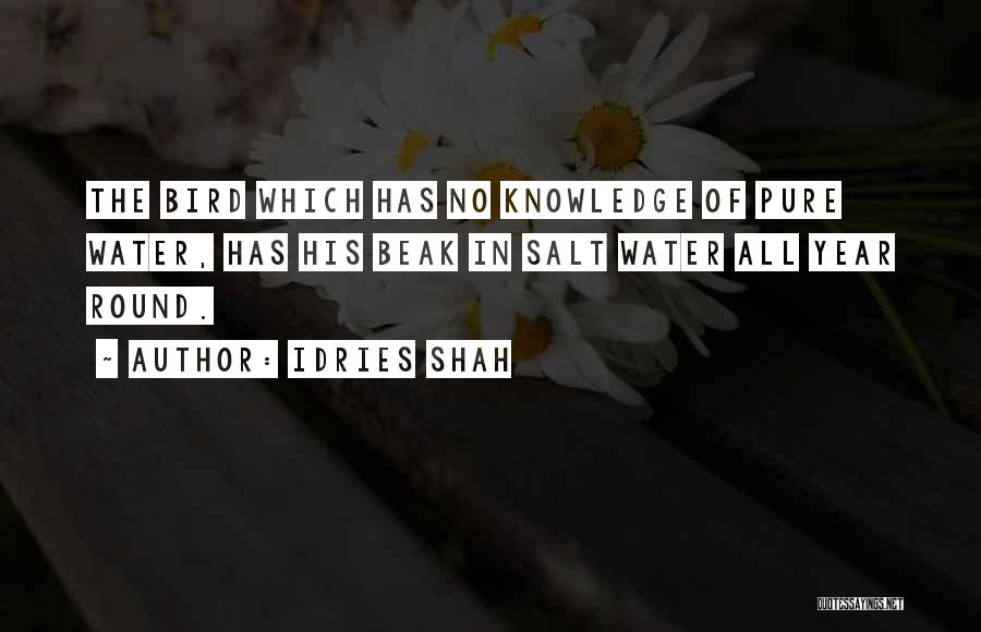 Idries Shah Quotes 2213576