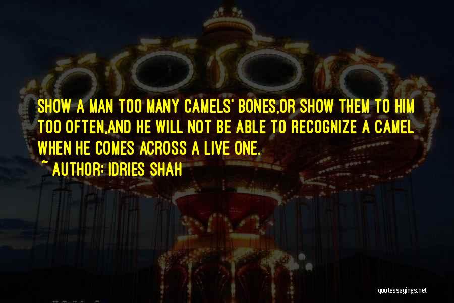 Idries Shah Quotes 351531