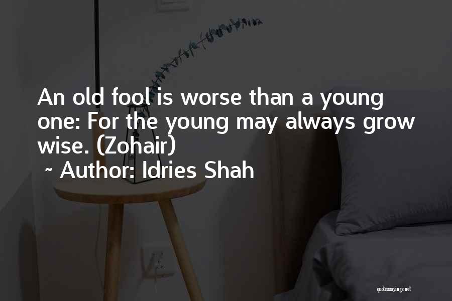 Idries Shah Quotes 723436
