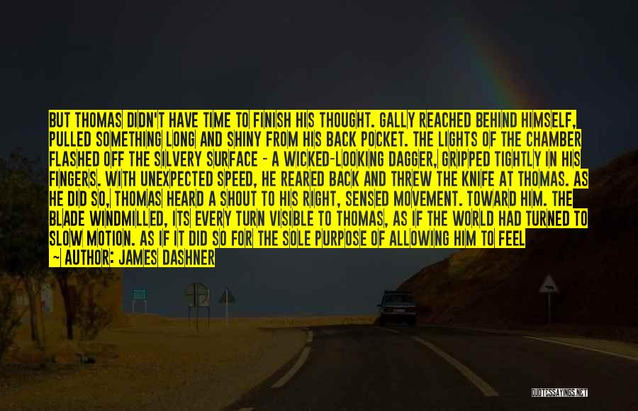 If I Can Turn Back Time Quotes By James Dashner