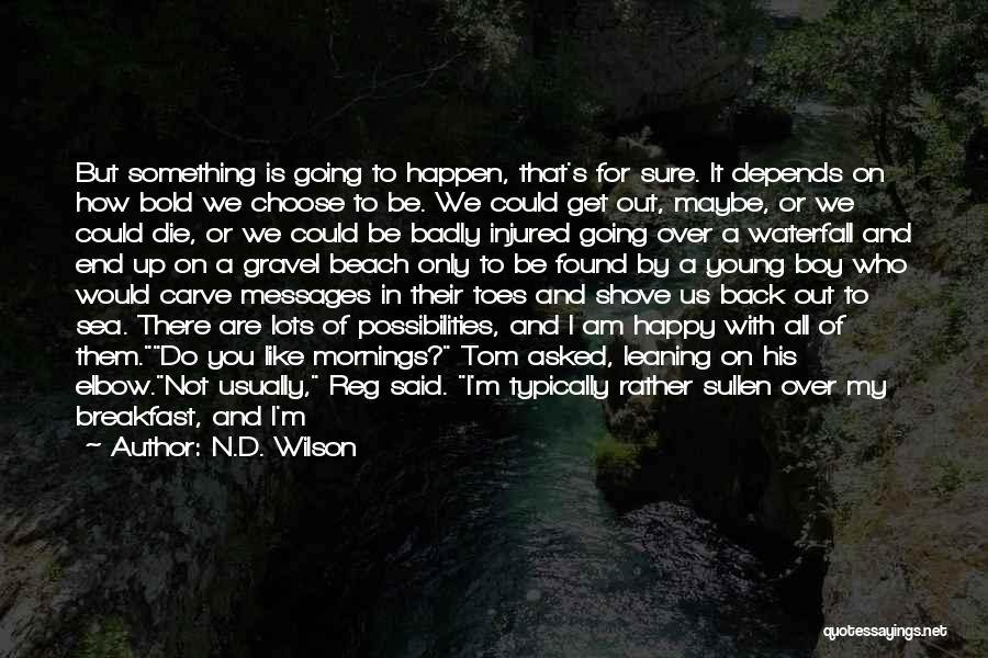 If I Die Young Quotes By N.D. Wilson