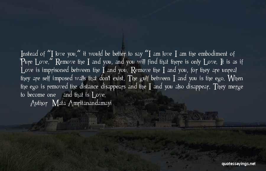 If I Disappear Quotes By Mata Amritanandamayi