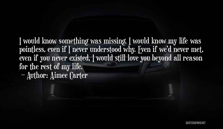 If I Never Met You Quotes By Aimee Carter