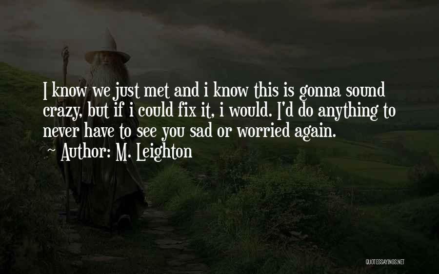 If I Never Met You Quotes By M. Leighton