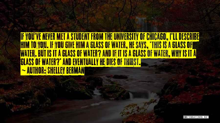 If I Never Met You Quotes By Shelley Berman
