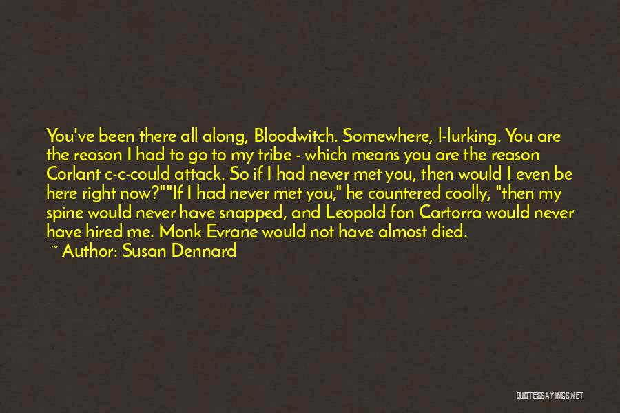 If I Never Met You Quotes By Susan Dennard