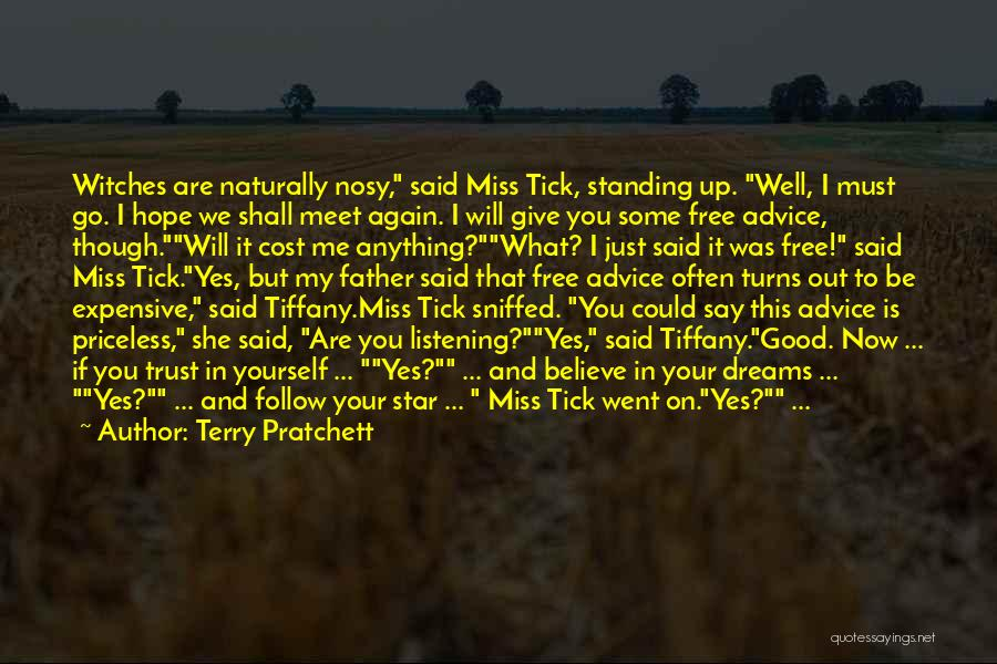 If I Said I Miss You Quotes By Terry Pratchett