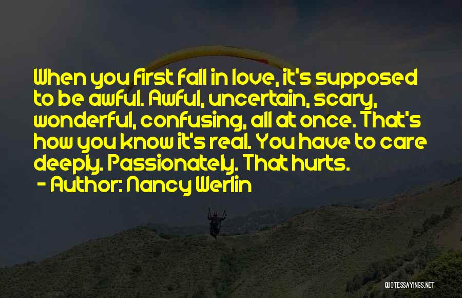 If It Hurts You Still Care Quotes By Nancy Werlin