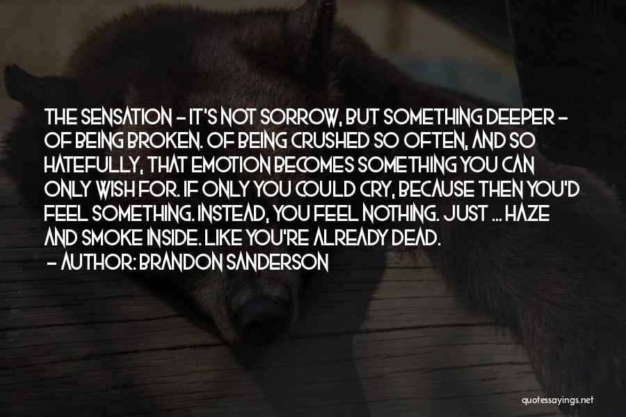 If It's Not Broken Quotes By Brandon Sanderson