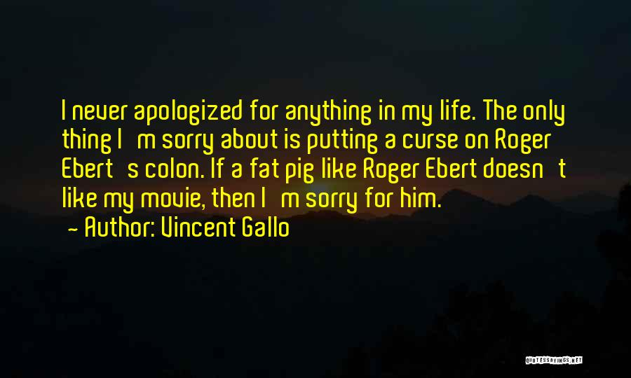 If Only Movie Quotes By Vincent Gallo