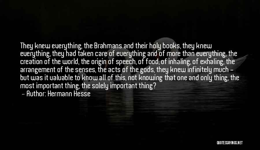 If Only You Knew How Much I Care Quotes By Hermann Hesse