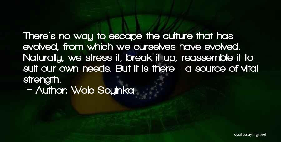 If We Ever Break Up Quotes By Wole Soyinka