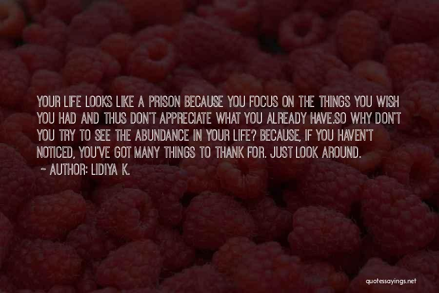 If You Don't Like Quotes By Lidiya K.