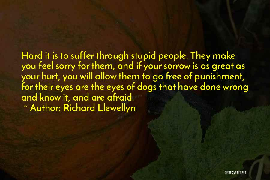 If You Feel Hurt Quotes By Richard Llewellyn