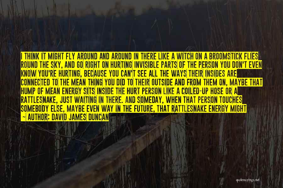 If You Hurt The Right Person Quotes By David James Duncan