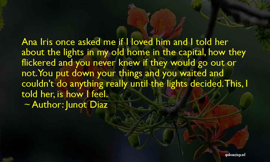 If You Really Knew Me Quotes By Junot Diaz