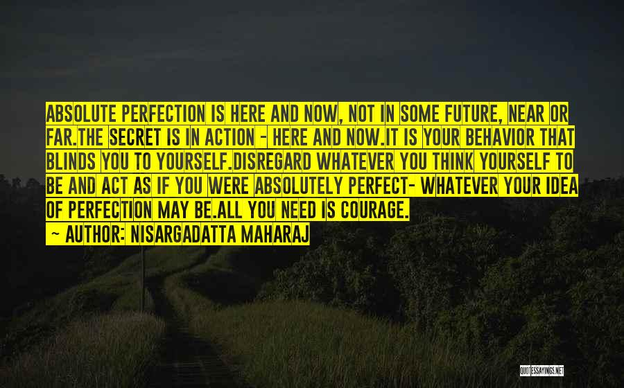 If You Think Your Perfect Quotes By Nisargadatta Maharaj