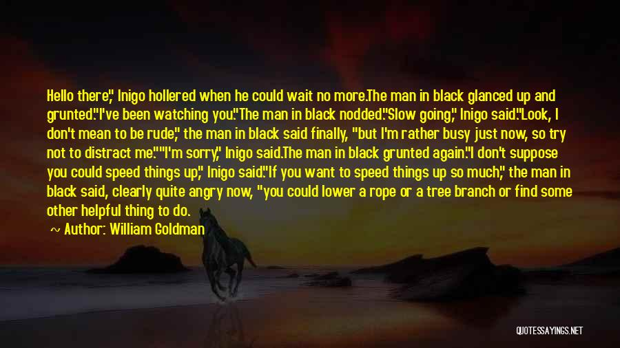 If You Want Me To Wait Quotes By William Goldman