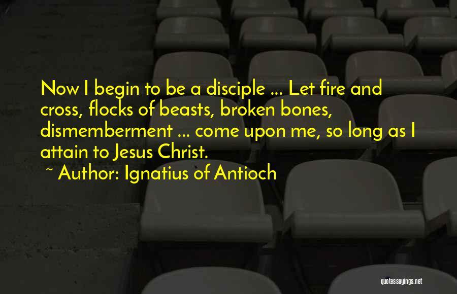 Ignatius Of Antioch Quotes 1017952