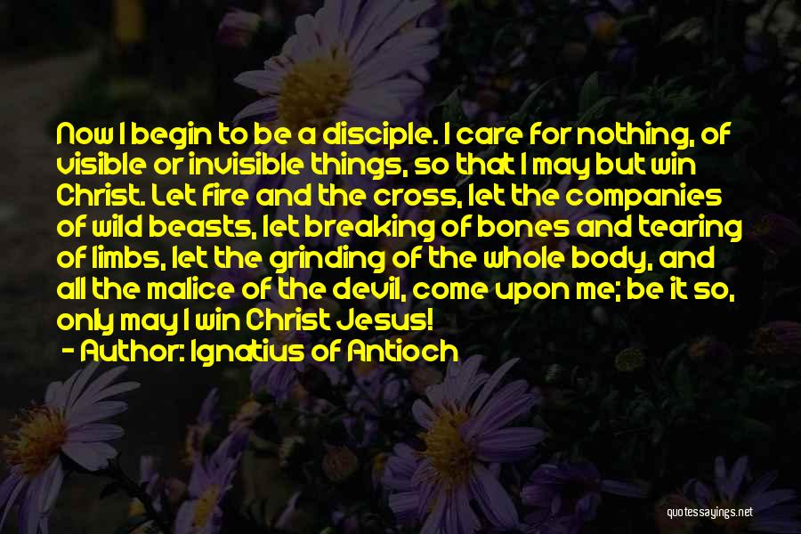 Ignatius Of Antioch Quotes 1108072