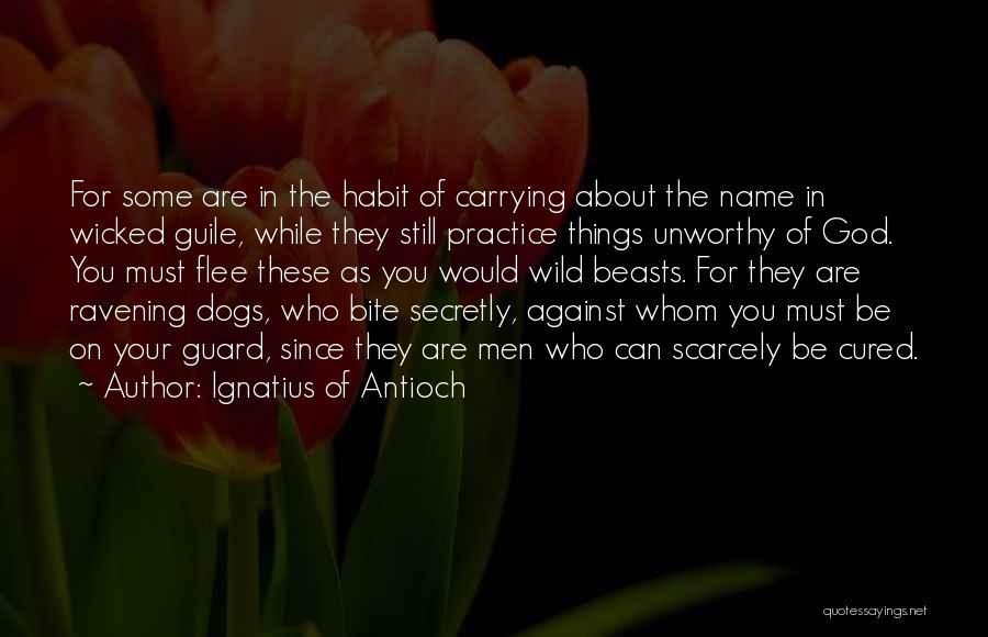 Ignatius Of Antioch Quotes 1303225