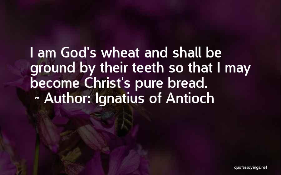 Ignatius Of Antioch Quotes 1812499