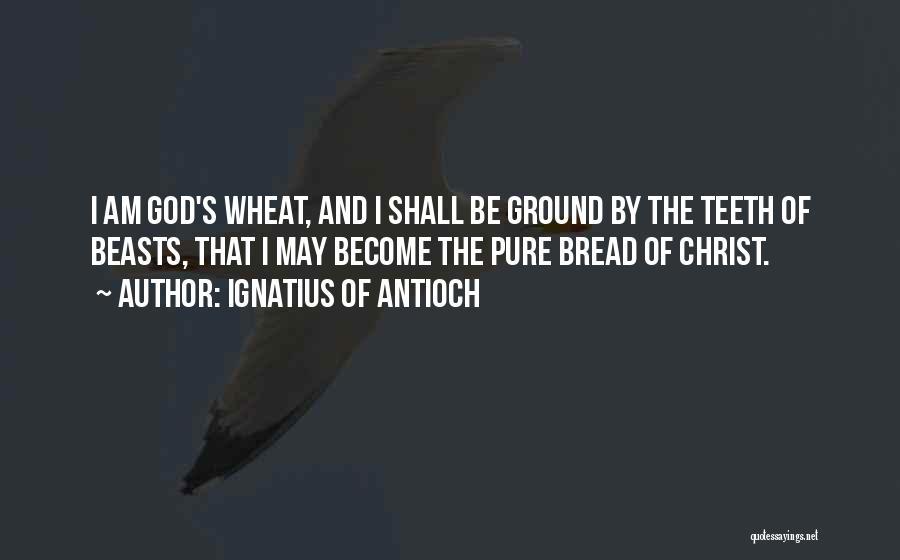 Ignatius Of Antioch Quotes 2053223