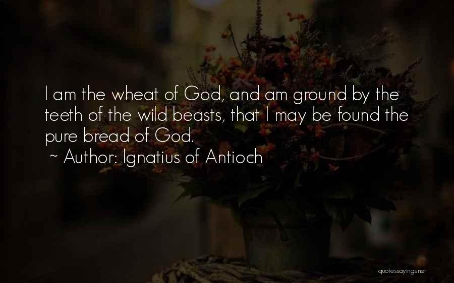 Ignatius Of Antioch Quotes 371613