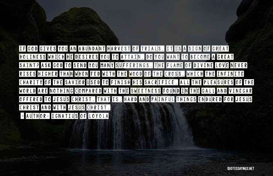 Ignatius Of Loyola Quotes 849472