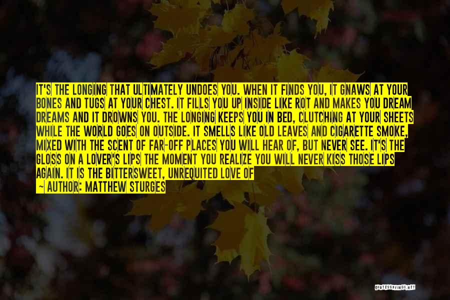 I'll Never Break Up With You Quotes By Matthew Sturges