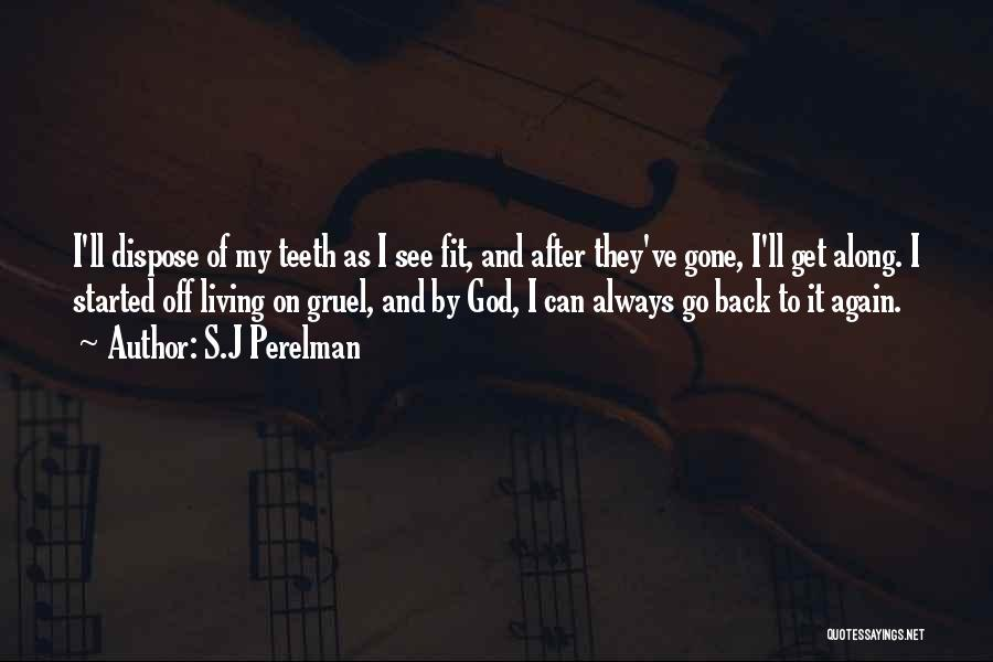 I'll See You Again Someday Quotes By S.J Perelman
