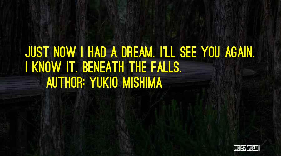 I'll See You Again Someday Quotes By Yukio Mishima