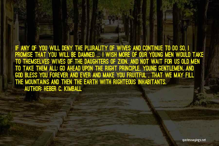 I'll Wait For You Forever Quotes By Heber C. Kimball