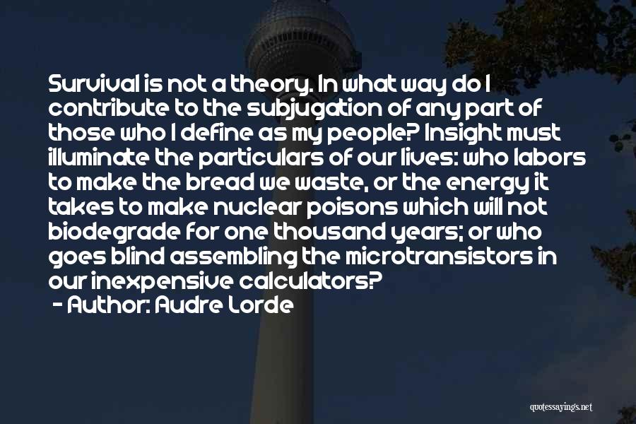 Illuminate Quotes By Audre Lorde