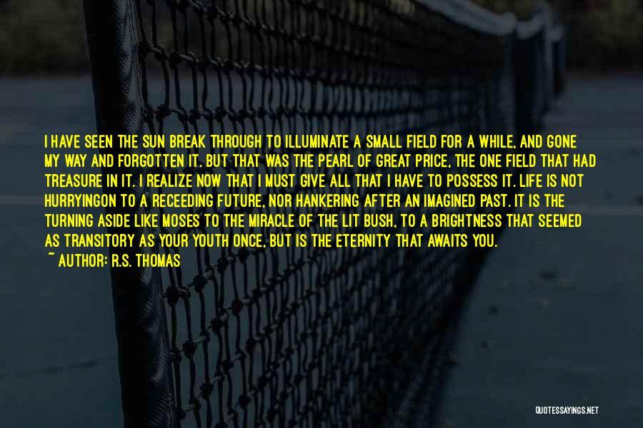 Illuminate Quotes By R.S. Thomas