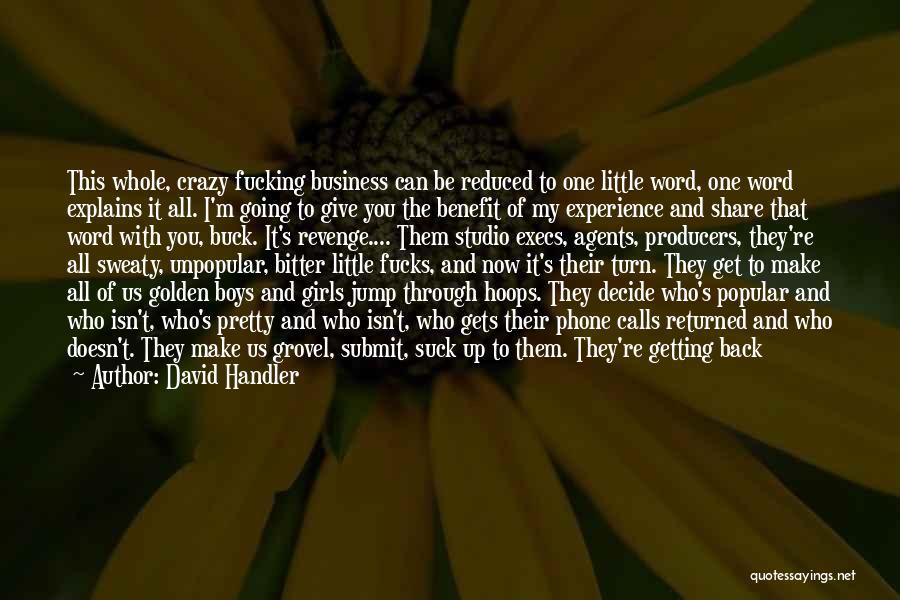 I'm Crazy You Quotes By David Handler