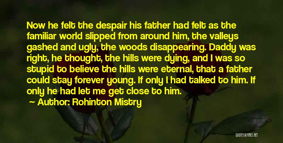 I'm Disappearing Quotes By Rohinton Mistry