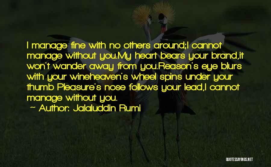 I'm Fine Without You Quotes By Jalaluddin Rumi