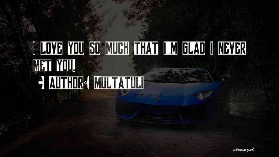 I'm Glad I Met You Love Quotes By Multatuli